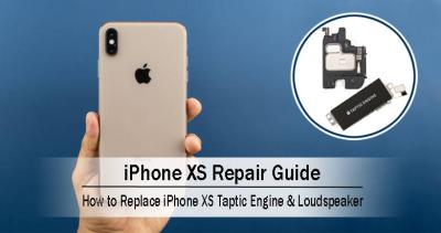 How to Replace the iPhone XS Taptic Engine & Loudspeaker?