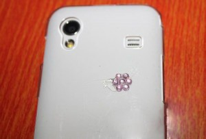 flower diamond case