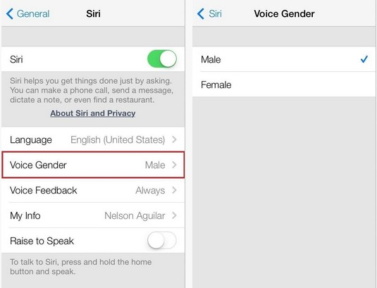 Siri voice gender