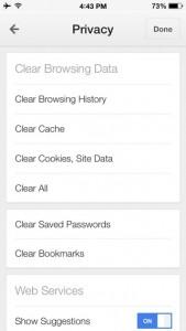 Delete cache from Chrome