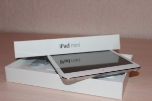 How to Solve the Common iPad Mini Problems