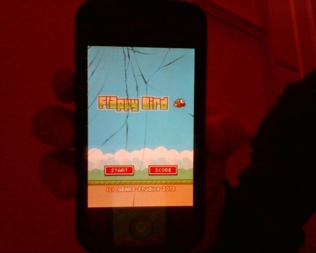 flappy bird crack screen 1