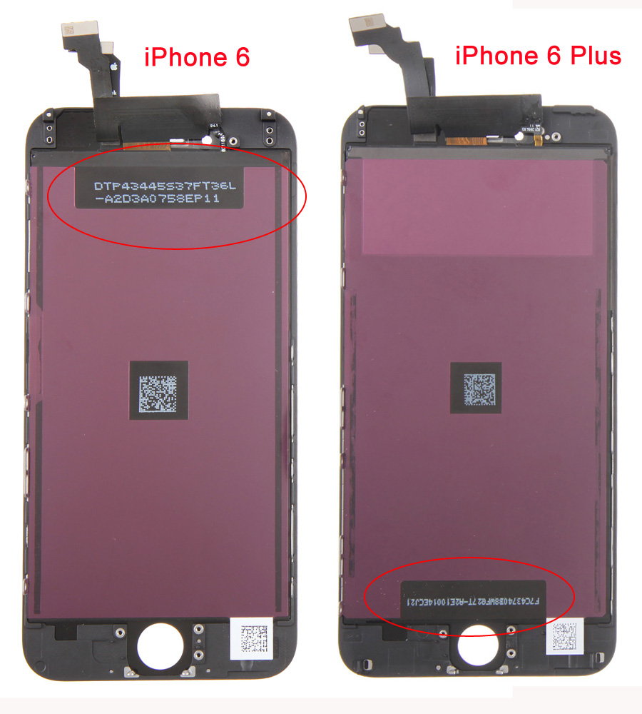 iphone 6, 6 Plus Screen Comparison 2