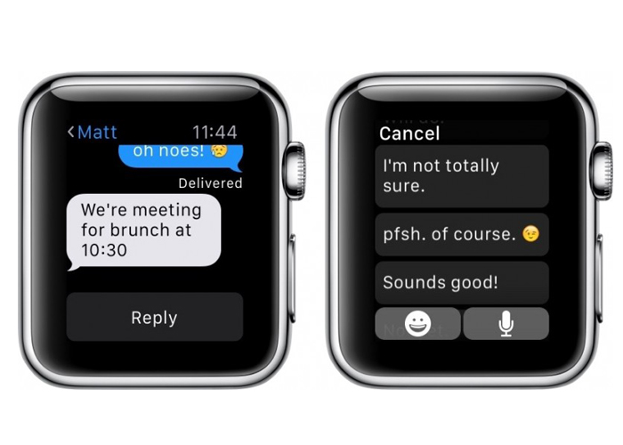 Apple Watch 5 default reply