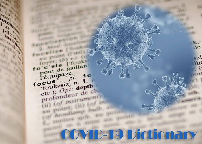 Covid-19 terms